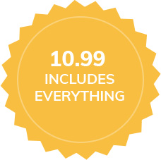 10.99 includes everything icon